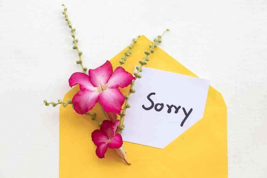break the i'm sorry habit with hypnosis